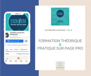 Esquisse Formation Facebook Virginie Braconnier Marketing Consultante dept 86 79