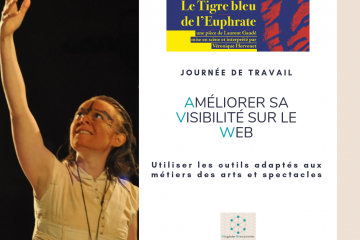Visibilité web Arts et Spectacles Virginie Braconnier Marketing Consultante dept 86 79