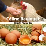 Céline Baulouet Oeufs Plein Air
