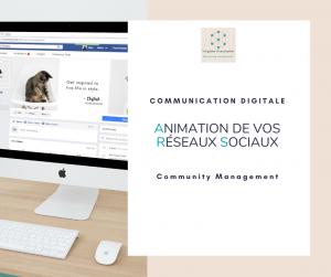 Community-Management-Virginie-Braconnier-Marketing-Consultante